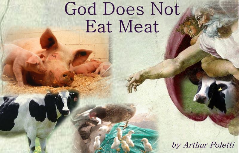 Finally Pope Francis Believes Compassion For Animals Can: God Wants The Pope To Be A Vegan