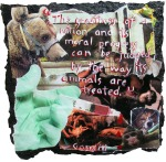animal_rights_collage_by_peta2