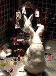 Animal_Wrongs__by_atomic_ellie
