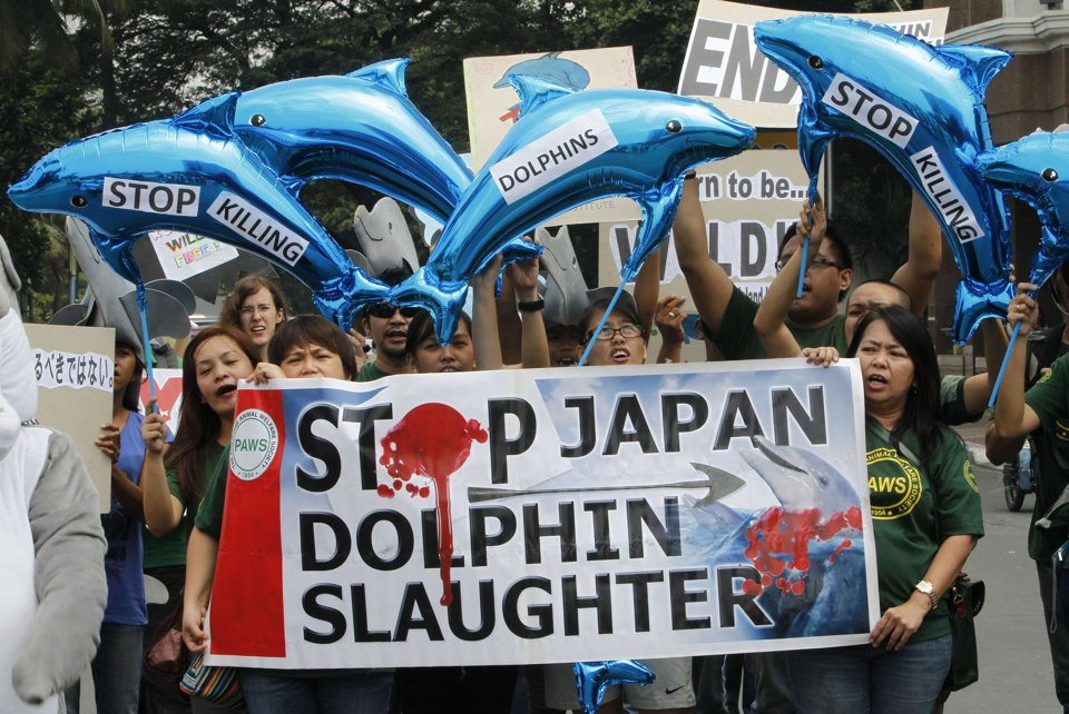 japan_protest_slaughter - Taiji dolphin drive hunt - Lifestyle, Culture and Arts