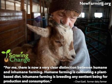 cheri-ezell-new-farming-for-web (1)