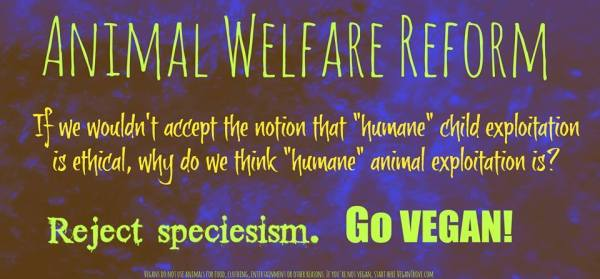 Vegan-animal-welfare-reform
