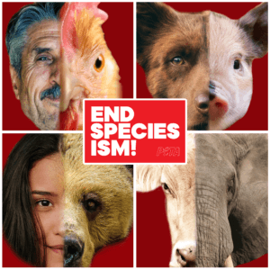 GEN-EndSpeciesism_ShareableImageUpdate-NC-PO-300x300